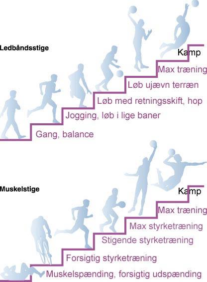 genoptræning af knæ øvelser